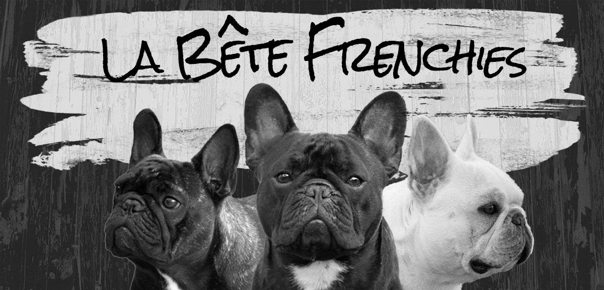La Bête French Bulldogs